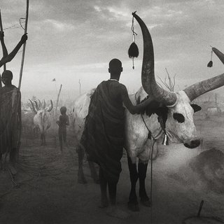 Dinka group at Pagarau, Southern Sudan art for sale