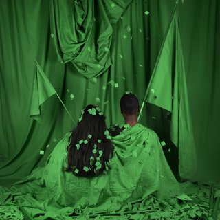 Stephanie Syjuco, Standard Bearers (Chromakey Aftermath)