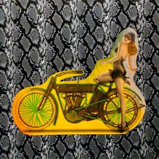 Motorbike on snakeskin art for sale