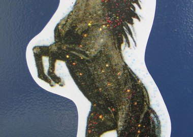 work by Sue de Beer - Untitled (Stallion Sticker)