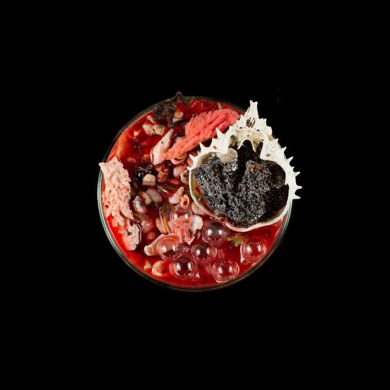 by suzanne-anker - Vanitas (in a Petri dish) 10
