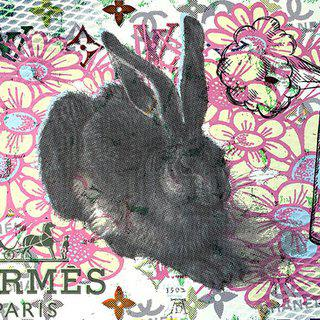 Albrecht Durer Rabbit Disaster art for sale