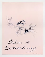 Believe in Extraordinary, by Tracey Emin