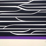 different view - Victor Vasarely, Purple Composition - 2