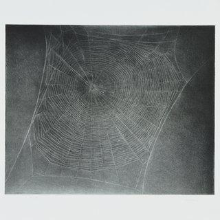 Vija Celmins, Untitled (Web 4)