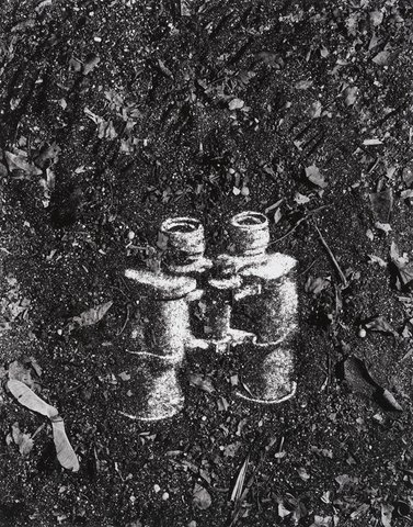 Vik Muniz - Binoculars (Pictures of Soil)