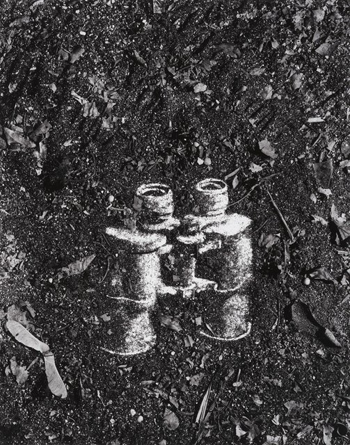 Vik Muniz, Binoculars (Pictures of Soil)