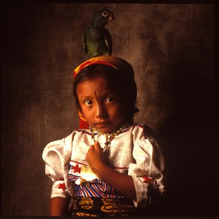 Cuna Parrot Girl #2 art for sale