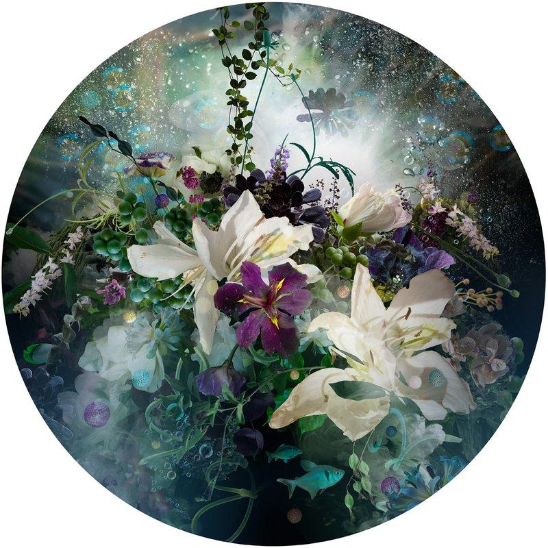 Ysabel Lemay - Nexus for Sale | Artspace