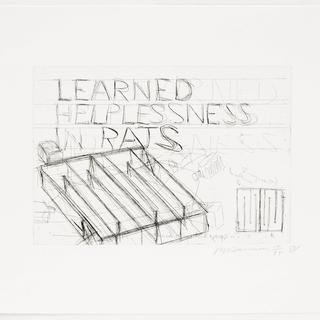 Bruce Nauman, Learned Helplessness in Rats