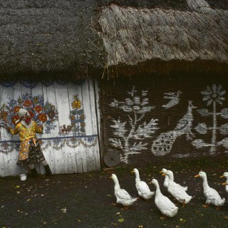 "Poland. Zalipie, the ""painted village"" near Ternow. Houses are completely painted on the inside and outside by their owners. 1976.  art for sale"