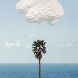 Brain/Cloud (With Seascape and Palm Tree) art for sale