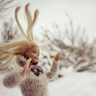 Icelandic Barbie art for sale