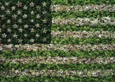 work by Vik Muniz - American Flag
